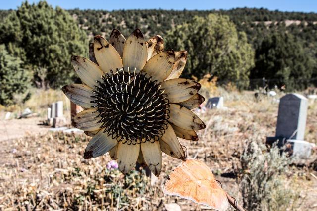 cemetery-1697534_1920