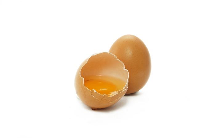 egg-2796898_1920.jpg